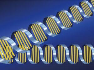 このDNAに書かれた情報の一つ一つを遺伝子といいます