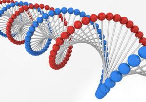 潰瘍性大腸炎は遺伝するのか?