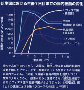 新生児における腸内細菌の変化