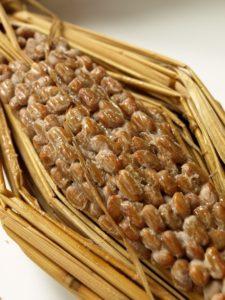 植物性の乳酸菌の代表である納豆
