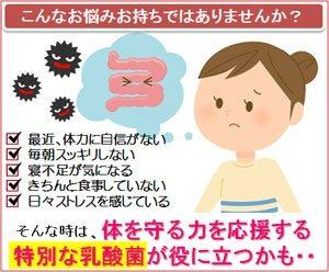 腸ゲンキの秘訣は特別な乳酸菌のチカラ│乳酸菌サプリメント「メガサンA150」
