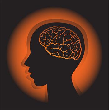 パニック障害はセロトニンやノルアドレナリンといった、神経伝達物質(ホルモン)の分泌量の低下やバランスの乱れが原因