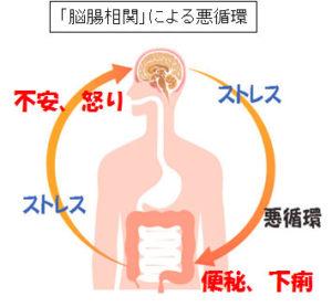 慢性疲労症候群の症状は、セレトニンホルモンの生成をつかさどる腸内環境の機能低下と一致しています