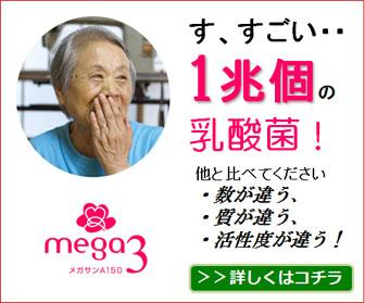 腸が元気で体も元気 体を守る力を高める乳酸菌メガサンA150