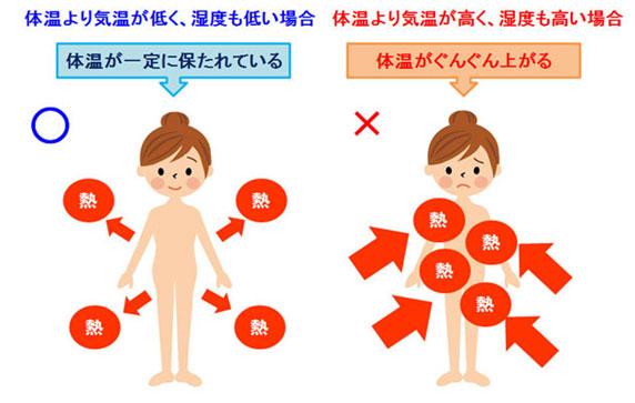猛暑や高温多湿での発汗による熱中症も夏バテの原因の一つです