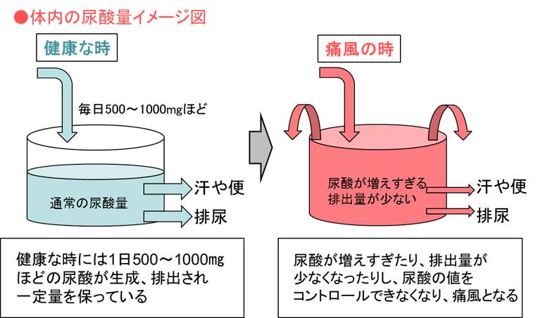 体内に発生する尿酸のイメージ