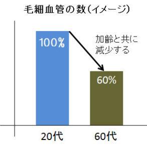 毛細血管はその数も20代をピークに60代ではおよそ40%も減少