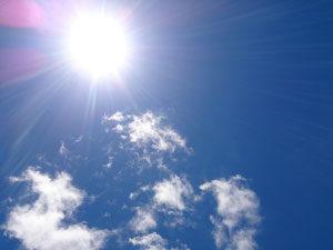 夏の強い紫外線により体内に活性酸素が発生します
