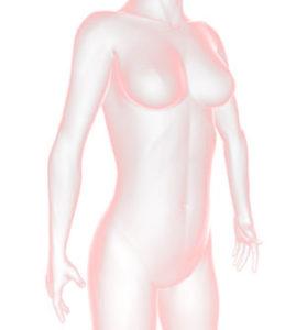 腸の低体温化が免疫力の低下の原因となる