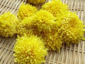免疫力を高める食べ物~おススメ夏野菜 食用菊