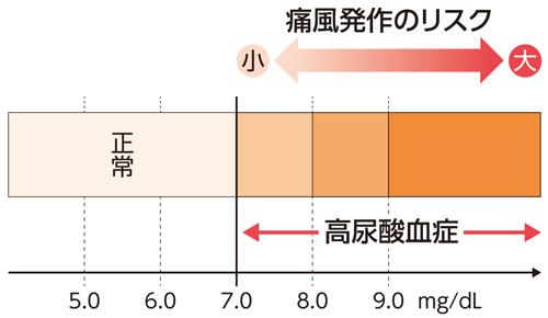 尿酸値が7.0mg/dLを超えると高尿酸血症となる