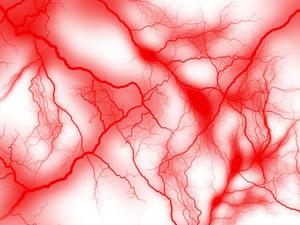 体の中心部の血行がよくなれば臓器が温まり、脳や腸の働きも活発化します