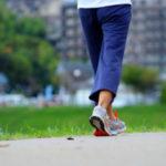 脳への血流量が増加する?なぜ歩くことが「脳の老化予防」に良いか?