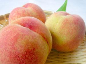 不老長寿の実として有名な桃は、食物繊維が豊富です