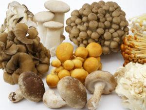 免疫力を高める食べ方や食べ物のヒント~不溶性食物繊維を豊富に摂取する