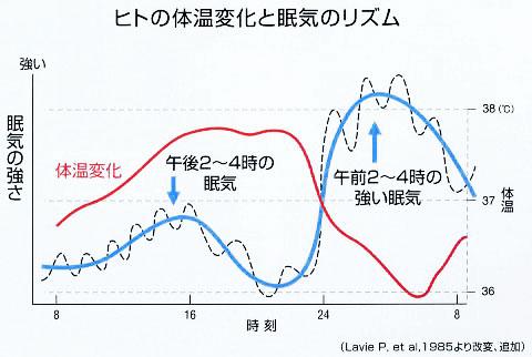 人の体温変化と眠気のリズム