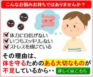 全ての病気は腸に原因あり│乳酸菌サプリメント「メガサンA150」