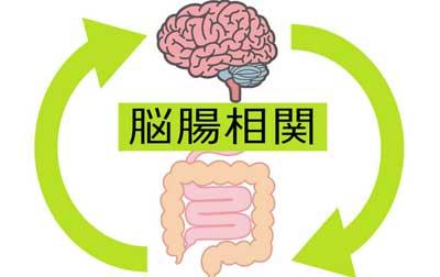腸が悪いと睡眠にも悪影響を与える